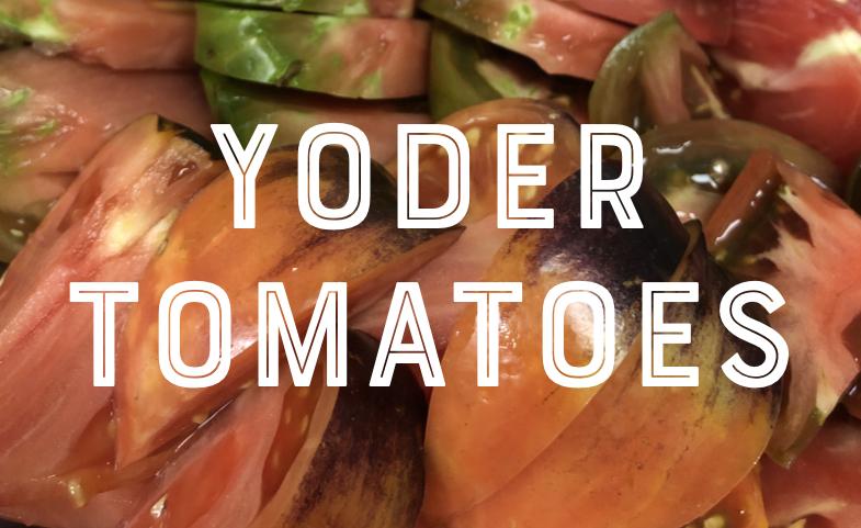 Bill Yoder Talks Heirloom Tomatoes