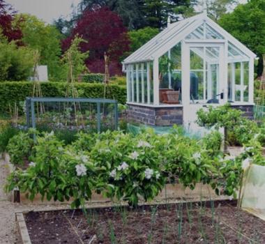 Our Giving Garden